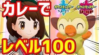 【ポケモン剣盾】カレーだけでポケモンをレベル100にした!!!