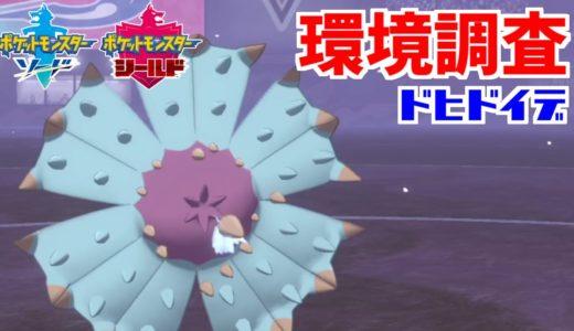 【ポケモン剣盾】シリーズ6環境調査⑯ドヒドイデ