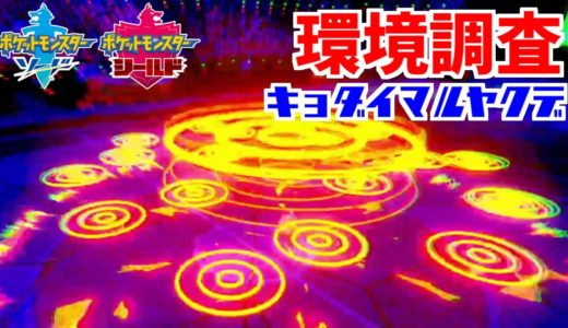 【ポケモン剣盾】シリーズ6環境調査㉑マルヤクデ